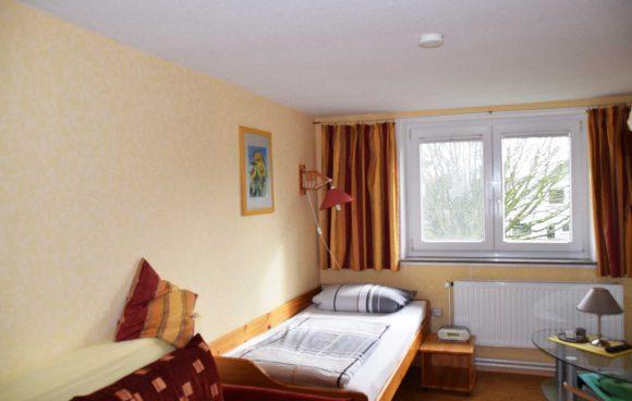 Zimmer-3-Vögel-Einbettzimmer-mit-Schlafsofa